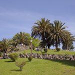 Jardim_do_Morro,web1